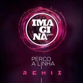 Perco a linha (Participação especial de Gaab) (Marvixx Remix) by Imaginasamba