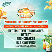 Ibiza Goes Hard 2018 - Official Soundtrack - Single de Various Artists