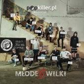 Popkiller Młode Wilki 6 by Popkiller Młode Wilki