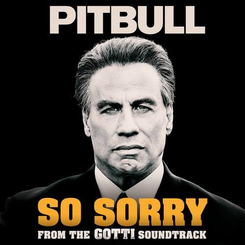 So Sorry by Pitbull