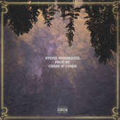 Stevie Wonderful by Quentin The 5th