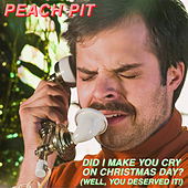 Did I Make You Cry on Christmas Day? (Well, You Deserved it!) by Peach Pit