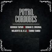 Potro Cordobés de Rodrigo Tapari