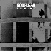 Decline and Fall de Godflesh