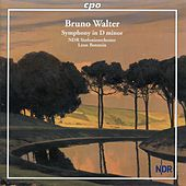 Walter: Symphony No. 1 in D Minor by NDR-Sinfonieorchester