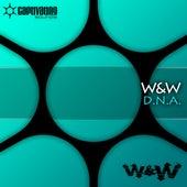 D.N.A. von W&W