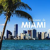 Welcome to Miami de Various Artists