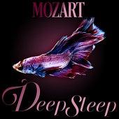 Mozart Deep Sleep by Axel Gillison