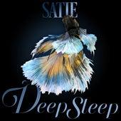 Satie Deep Sleep by Axel Gillison