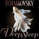 Tchaikovsky Deep Sleep by Axel Gillison