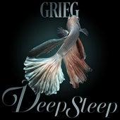 Grieg Deep Sleep de Axel Gillison