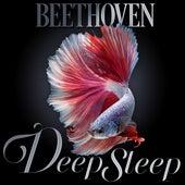 Beethoven Deep Sleep by Axel Gillison