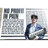 No Profit in Pain by Gruff Rhys