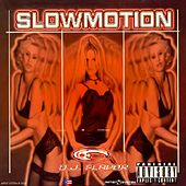 Slowmotion de Various Artists