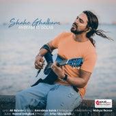 Shahe Ghalbam by Amir Abbas Golab