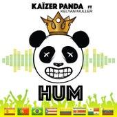 Hum by Kaïzer Panda
