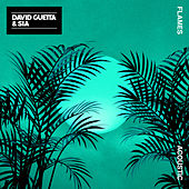 Flames (Acoustic) de David Guetta