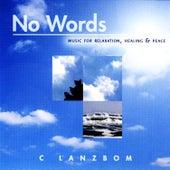 No Words by C Lanzbom