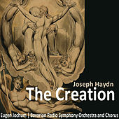 Haydn: The Creation by Bavarian Radio Symphony Orchestra