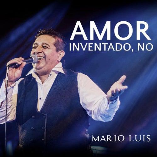 Amor Inventado, No by Mario Luis