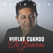 Vuelve Cuando Tu Quieras by Mario Luis