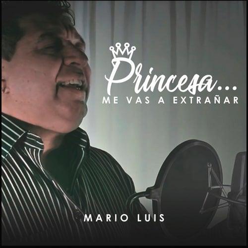 Princesa Me Vas a Extrañar by Mario Luis