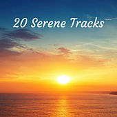20 Serene Tracks by Nature Sounds (1)