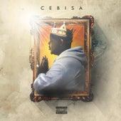 Cebisa by Zakwe