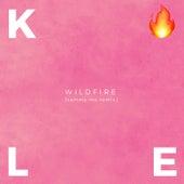Wildfire (Sammy MZ Remix) by Caroline Kole