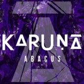 Abacus by Karuna