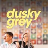 A Little Bit von Dusky Grey