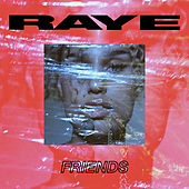 Friends by Raye