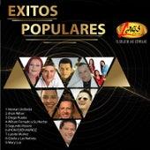 Éxitos Populares von Various Artists