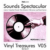 Vinyl Treasures, Series 2, Volume 5 de Various Artists