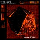 Ignite (Remixes) by K-391