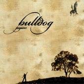 Pegasus de Bulldog