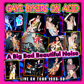 A Big Bad Beautiful Noize by Gaye Bykers on Acid