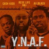 Y.N.A.F. (feat. Rexx Life Raj & Cash Kidd) by All Black