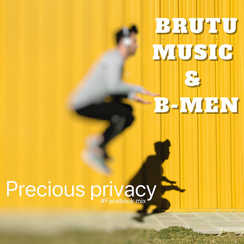 Precious privacy de Various