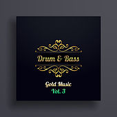 Drum & Bass Gold, Vol. 3 van Various