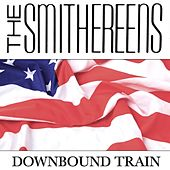 Downbound Train de The Smithereens