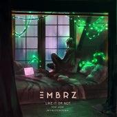 Like It Or Not (JNTHN STEIN Remix) von EMBRZ