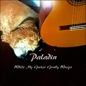 While My Guitar Gently Weeps by Paladin