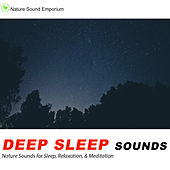 Deep Sleep Sounds - Nature Sounds for Relaxation, Meditation, Studying  & Deep Sleep de Nature Sound Emporium