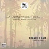 Summer Is Back von Various Artists