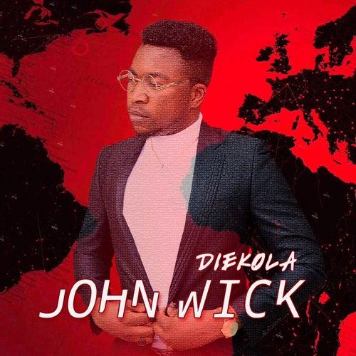 John Wick by Diekola