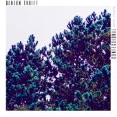 Confessional (Sonn Remix) by Denton Thrift
