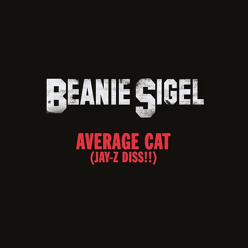 Average Cat (Jay-Z Diss!!) by Beanie Sigel