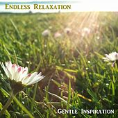 Gentle Inspiration by Endless Relaxation