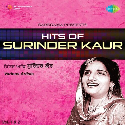 Hits Of Surinder Kaur Vol 1 2 By